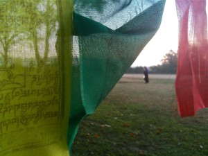 Prayer flags in South Texas. Photo by Angela Alston.